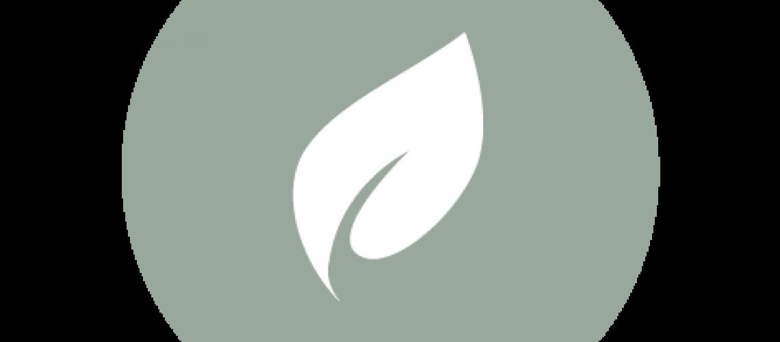 Lextera logo_RGB-05
